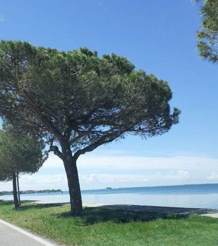 San giuliano venice by bike